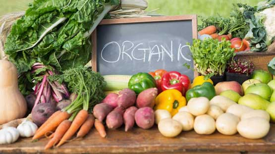 Global organic fruits and vegetables market 2018